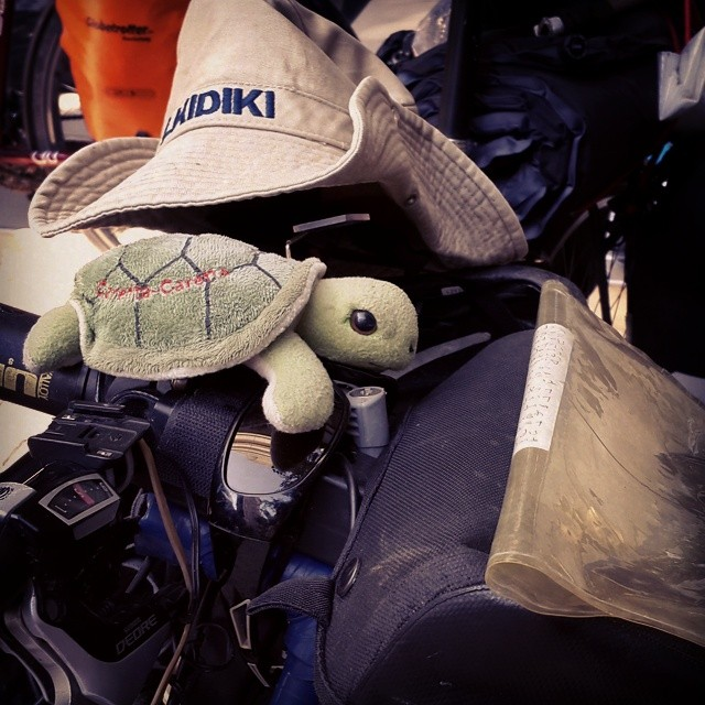 #caretta #caretta #cycling :)